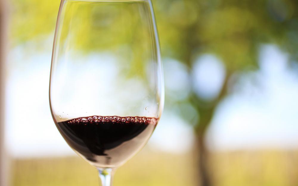 【完売のお知らせ】イタリアの新酒「ヴィーノ・ノヴェッロ」(船便)